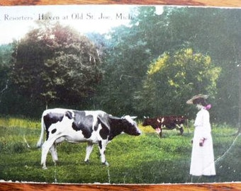 vintage POSTCARDS ... Old St Joe Mich postcard  not stamped 1900s  ...