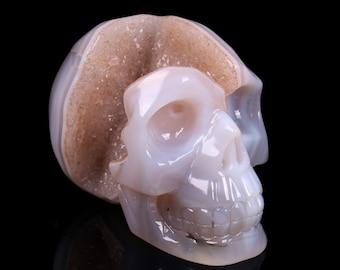 Natural White Agate Geode Quartz Crystal Cluster Carved Skull ,Healing Skull S037