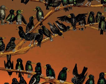 5 greetings cards - a starling roost