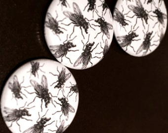 "The Flies 1"" Button"