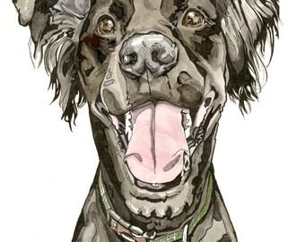 Custom Pet Portrait, Custom Dog Portrait, Draw my Dog, Pet Illustration, German Shepherd Portrait