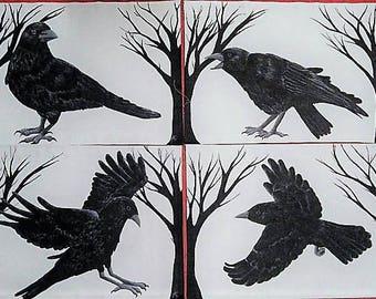 Set of four crow prints!