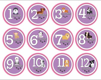 Baby Photo Milestone Stickers, Baby Girl Month Stickers, Monthly Baby Stickers, Baby Shower Gift, Baby Photo Props, Baby Growth Stickers