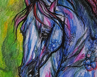 Arabian horse, equine art, equestrian portrait,  original ink and watercolor painting