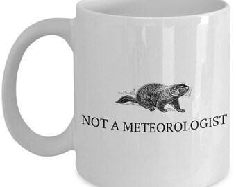 Meteorology Gift - Weather Science Coffee Mug - Not A Meteorologist - Funny Groundhog Mug