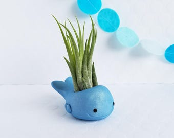 Whale Air Plant Holder, Air Planter, Mom Gift, Ocean Decor, Mothers Day, Gift for Her, Desk Accessory, Best of Spring, Animal Planter