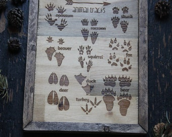Field Guide. Animal Tracks. Wooden SIgn. Kids Room. Nursery