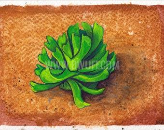 Succulent gouache painting