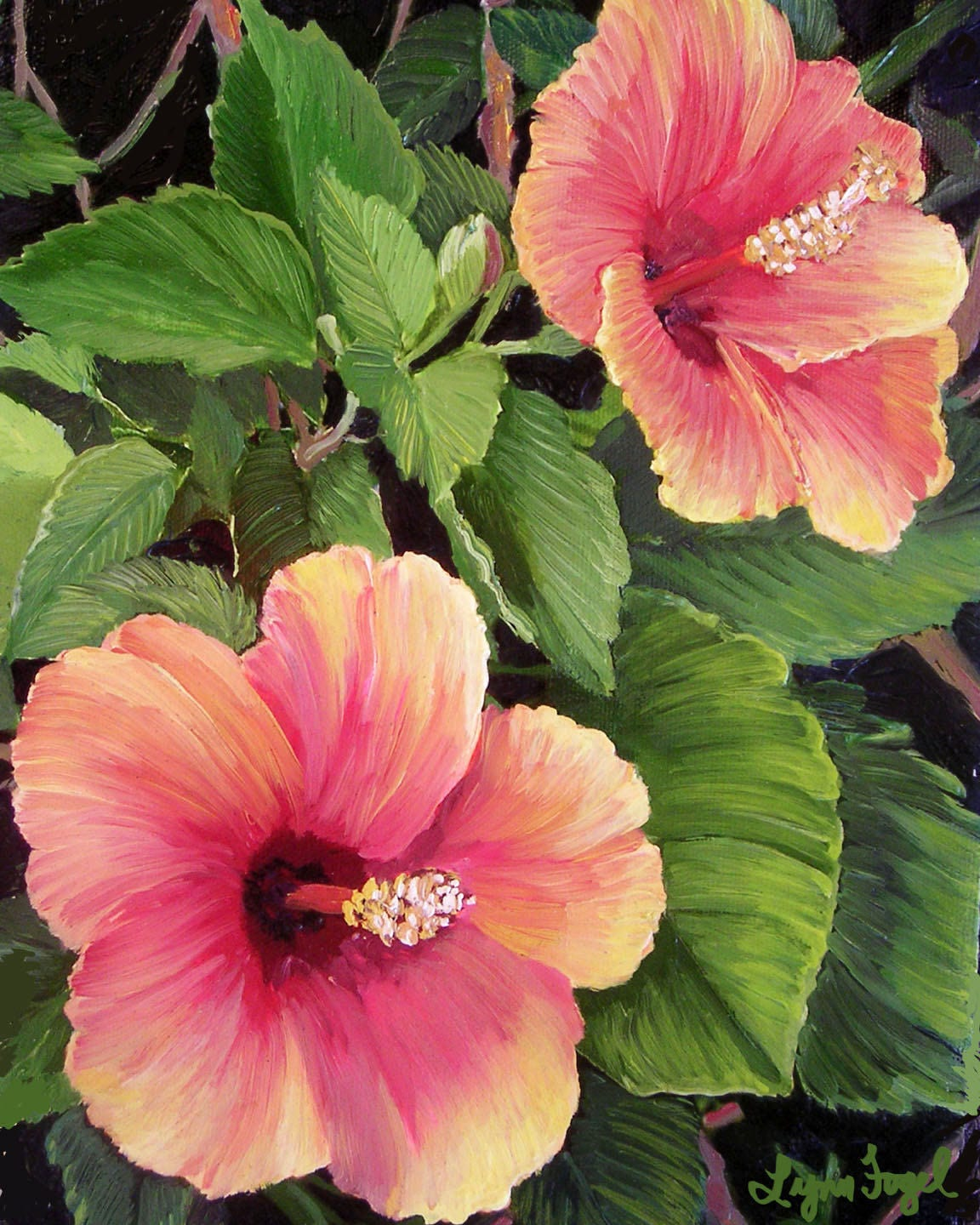 Hibiscus flower tropical flower tropical prints tropical request a custom order and have something made just for you izmirmasajfo Choice Image