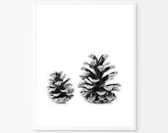 Pine Cone, Nordic Style Art, Nature Print, Scandinavian Wall Art, Botanical Black and White, Affiche Scandinave, Minimalist, Pine Cone Art