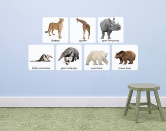 A Trip to the Zoo! In Stock! (Montessori & S.T.E.M.)