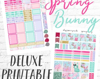Spring Bunny Deluxe PRINTABLE Sticker Kit / Fits Erin Condren Vertical Life Planner