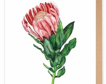 A6 Protea Greeting Card