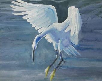 Landing Waterbird Original Watercolor and Gouache Painting
