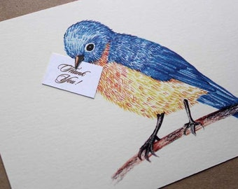 Illustrated Bird Thank You Notes- set of 50