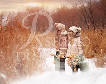 16 Winter digital backdrops Fox color, Instant download