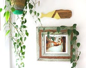 Whale Home Decor, Olive Y...