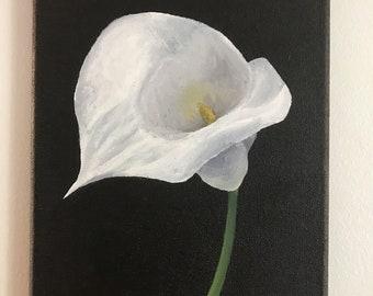 Calla Lily | Original Art Print | IRISROSES