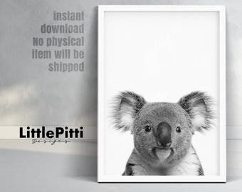 Koala, australian art, koala nursery decor, koala bear wall art, nursery art print, koala photo, childrens art prints, Kids Room Wall Art