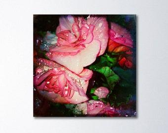 Floral Canvas Art, Boho Decor, Modern Photography Prints, Flower Canvas Wall Art, Pink Art, Dreamy Bedroom Art, Spring Burst Photography