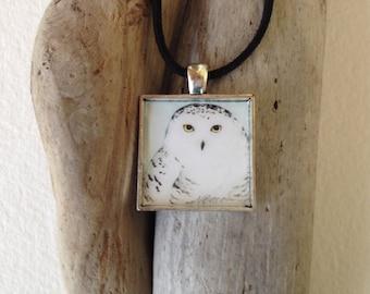 Snowy Owl Pendant handmade with watercolor art print