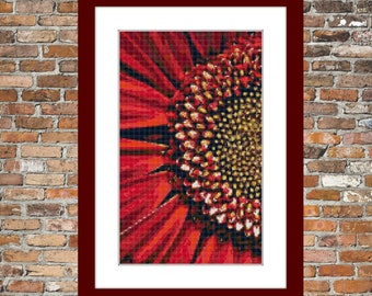 Red Gerbera - a Counted Cross Stitch Pattern