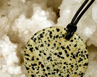 N224 Dalmatian Jasper pendant