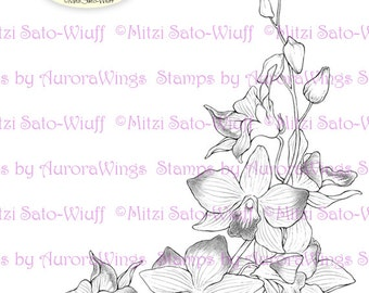 Digital Stamp - Instant Download - Orchid Corner - Elegantly Arranged Floral Corner - Floral Line Art for Cards & Crafts by Mitzi Sato-Wiuff
