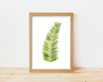 dibujo hoja, dibujo hoja de palma, print tropical, dibujo palma, hoja de palma, feuille de palmier, palmera, dibujo botánico, dibujo plantas