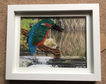 Kingfisher, quilled in box frame 29 x23cm