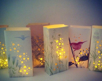 5 Botanical Lanterns, Nature Luminaries, Flowers, Birds, Insects, Trees, Plants, Outdoor Wedding, Luminary Bags, Nature, Book Art, Upcycled
