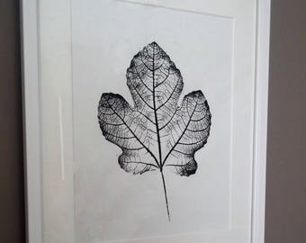 Fig Leaf Print