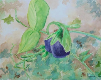 Floral painting, sweetpea, original garden art by Nan Henke 11x14 inches