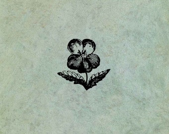 Pansy Flower SMALL - Antique Style Clear Stamp