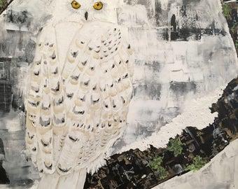 Snowy Owl 20 x 24 acrylic on canvas.