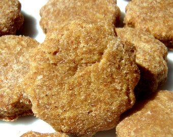 Organic Dog Treats - Bitty Bites - Gourmet Dog Treats Organic All Natural Vegetarian - Shorty's Gourmet Treats