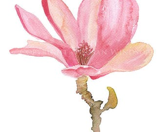 Pink Magnolia Watercolor Painting Giclee Print 8 x 10 (8.5 x 11) Floral