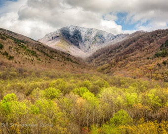 Smoky Mountains Spring Landscape – Mount Le Conte