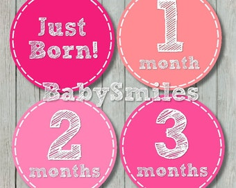 FREE GIFT Monthly Baby Stickers Baby Month Stickers Girl Month Stickers Monthly Bodysuit Sticker Monthly Milestone Stickers Baby Shower
