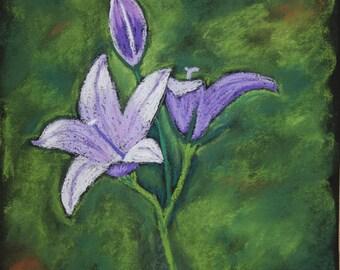 """Original pastel painting, """"Solitude."""""""