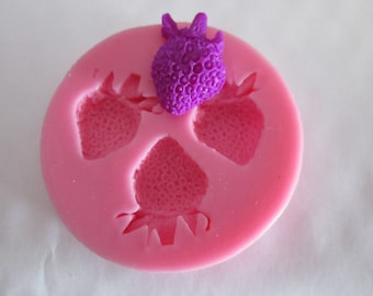silicone mold to make strawberries