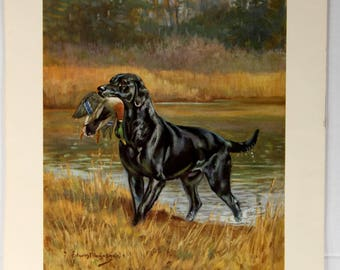 Black Labrador Retriever Print, Edwin Megargee, Hunting Dog with Mallard Duck, Mid-Century Art, Dog Prints, Ready to Frame, Home Decor