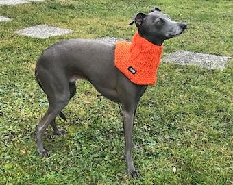 Dog Neckwarmer - NEON COLOR EDITION / Dog Scarf / Dog Snood