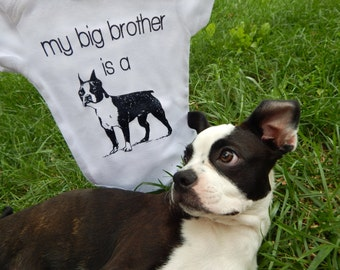 Boston Terrier Baby Clothes, Big Brother Dog Shirt, Boston Terrier Gifts, Dog Big Brother Shirt, Dog Baby Clothes, Dog TShirt