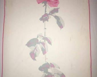 Vera Neumann Verasheer long stem rose scarf