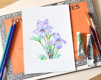 Violet Watercolor Print, Bird's-foot Endangered Plant Species, Ontario and Quebec Native Wildflower