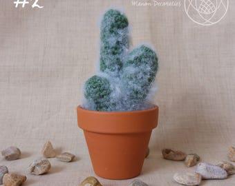 Crochet Cactus | #2