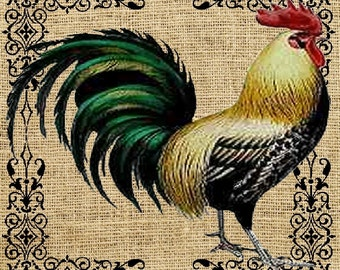 Blonde Rooster Black Sroll    Coasters  Home Decor    Set of 4  US Free Shipping