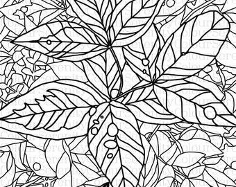 Leaves Adult Coloring Page Printable Instant Download #18