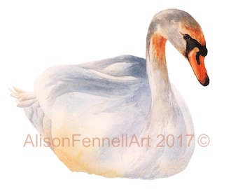 Watercolor Swan Print, HAITIAN HELPERS FUND, bird art prints